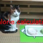 猫が一日に必要なカロリー計算プログラム
