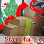 猫は上下運動が大好き!段ボール階段で運動不足とストレス解消!