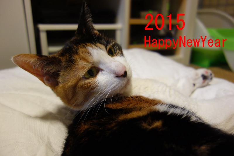 2015年 年頭ご挨拶