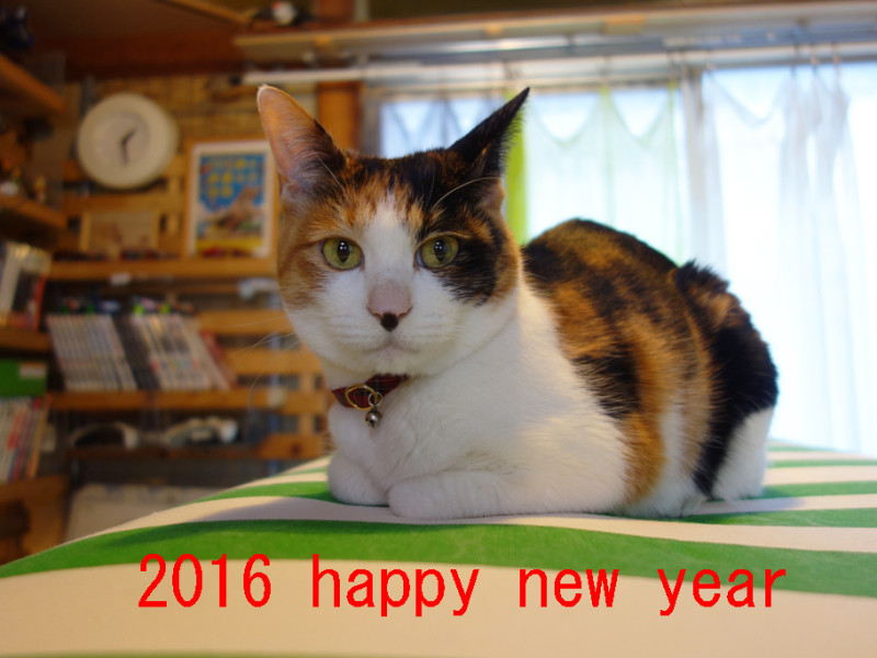 2016年 年頭ご挨拶