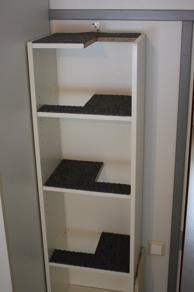 本棚ブチ抜きで猫階段