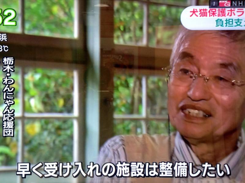 NHKおはよう日本 「犬猫保護ボランティア 大きな負担 支えるには」を見て、猫ITソリューションズが思うこと